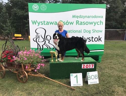 BONITA – Najpiękniejszy pies Oddziału Białostockiego