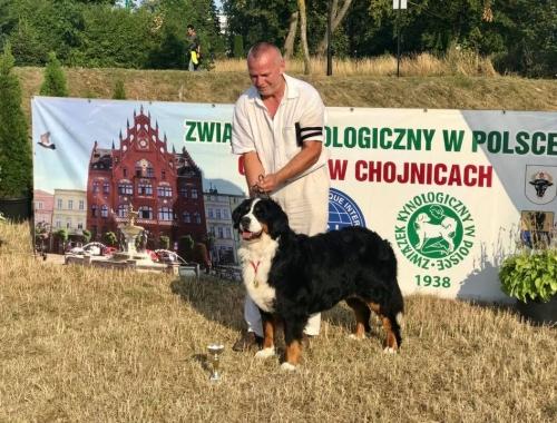 Bonita – Championem Polski